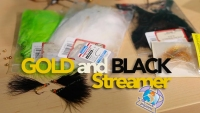 Goldandblack Streamer